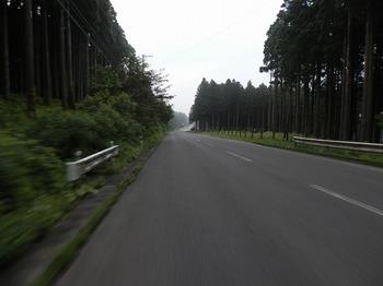 P8110078.jpg
